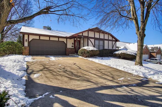 970 University Drive, Edwardsville, IL 62025 (#19014657) :: Clarity Street Realty