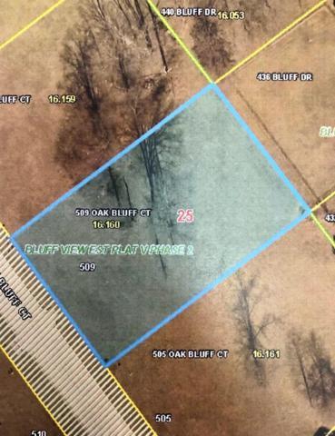 509 Oak Bluff Court, Troy, MO 63379 (#19014999) :: Matt Smith Real Estate Group