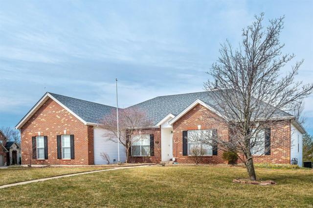 301 Crystal Brook Court, Lake St Louis, MO 63367 (#19015031) :: Ryan Miller Homes