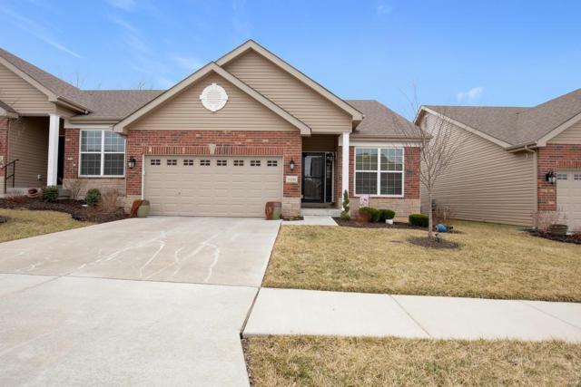 16158 Amber Vista Drive, Ballwin, MO 63021 (#19015401) :: RE/MAX Professional Realty