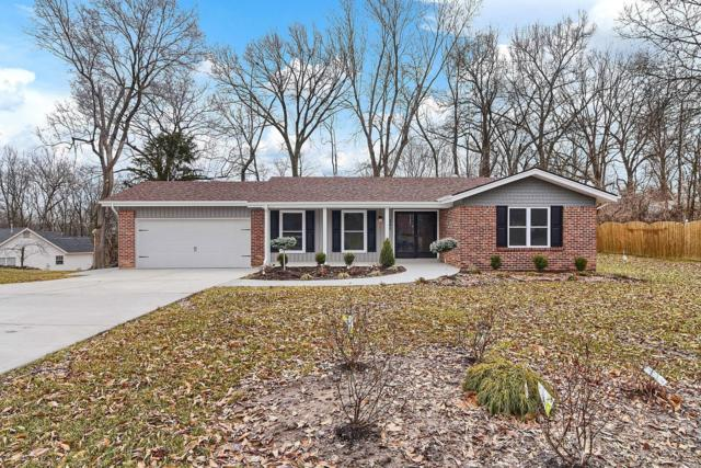 260 Churchill Lane, Ballwin, MO 63011 (#19015905) :: The Kathy Helbig Group