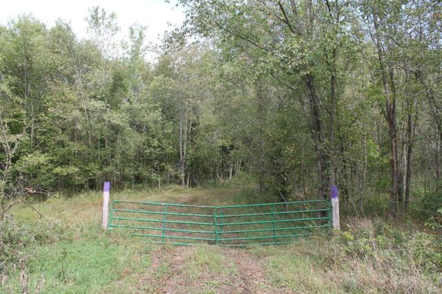 66 Ac+/- Hwy Pp, Silex, MO 63377 (#19015978) :: Parson Realty Group