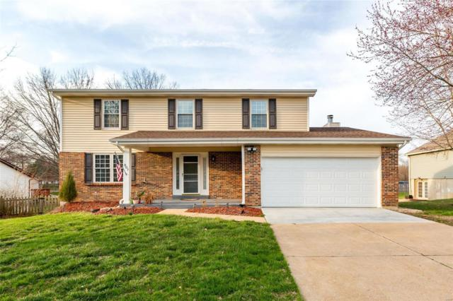 807 Palm Bay Drive, Ellisville, MO 63021 (#19016285) :: The Kathy Helbig Group