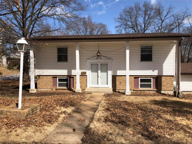 105 E Thornton Avenue, Webster Groves, MO 63119 (#19016366) :: Clarity Street Realty