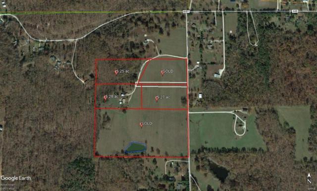 1 Duckett Estates, Poplar Bluff, MO 63901 (#19016518) :: Peter Lu Team