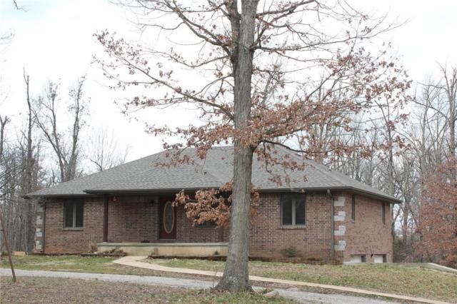 17550 Newton Drive, Phillipsburg, MO 65722 (#19016640) :: Matt Smith Real Estate Group