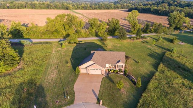 456 Oak Field Court, Washington, MO 63090 (#19017116) :: PalmerHouse Properties LLC