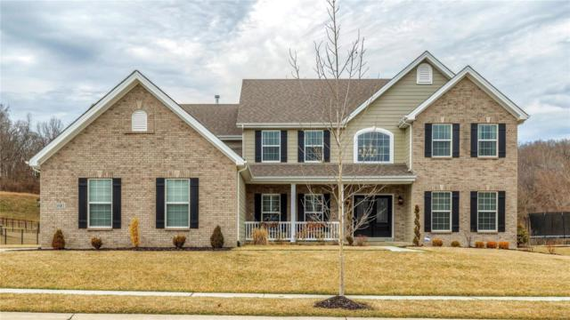 16961 Bottlebrush Court, Chesterfield, MO 63005 (#19017120) :: The Kathy Helbig Group