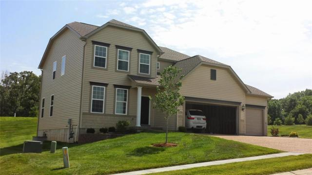 206 Paddington St, Wentzville, MO 63385 (#19017185) :: Kelly Hager Group   TdD Premier Real Estate