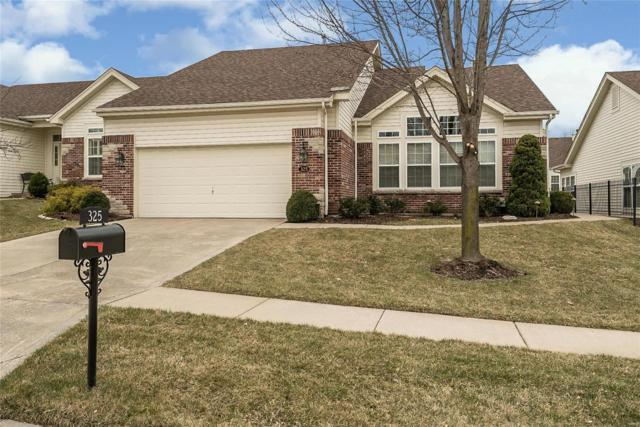 325 Solar Terrace Court, Chesterfield, MO 63017 (#19017231) :: The Kathy Helbig Group