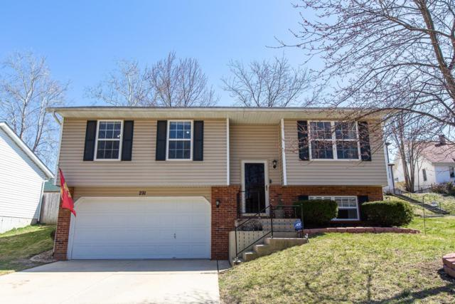 291 Harding Street, Collinsville, IL 62234 (#19017238) :: Ryan Miller Homes