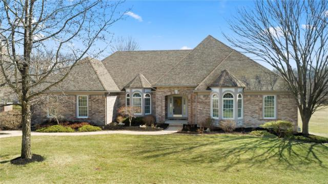 17401 Emily Way Court, Wildwood, MO 63005 (#19017989) :: Kelly Hager Group | TdD Premier Real Estate