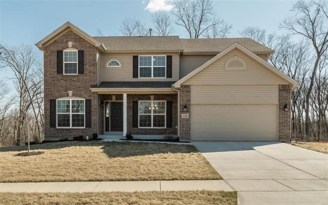 130 Keystone Ridge Drive, O'Fallon, MO 63366 (#19018131) :: Kelly Hager Group | TdD Premier Real Estate