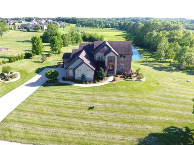 9724 Avondale Hills Lane, Wentzville, MO 63385 (#19018150) :: Ryan Miller Homes