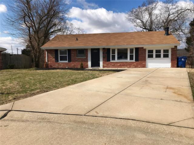 9955 Live Oak, St Louis, MO 63123 (#19018188) :: Clarity Street Realty
