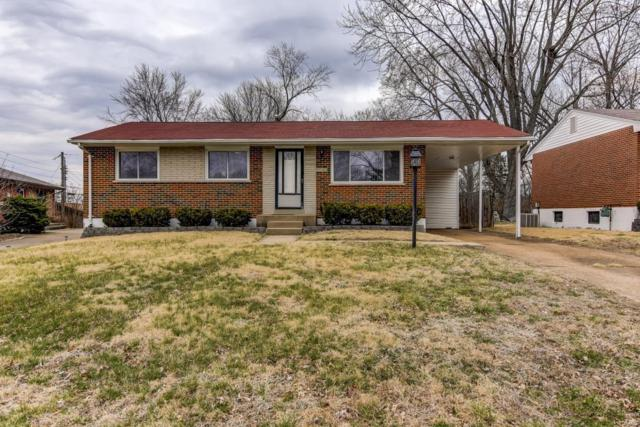 9743 Guehring Drive, St Louis, MO 63123 (#19018533) :: Clarity Street Realty