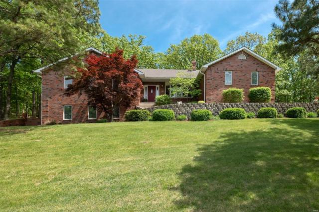 13405 Lakewood Drive, Ste Genevieve, MO 63670 (#19018802) :: RE/MAX Professional Realty