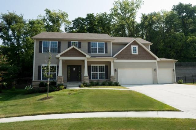 423 Filipp Lane, Lake St Louis, MO 63367 (#19018865) :: Ryan Miller Homes