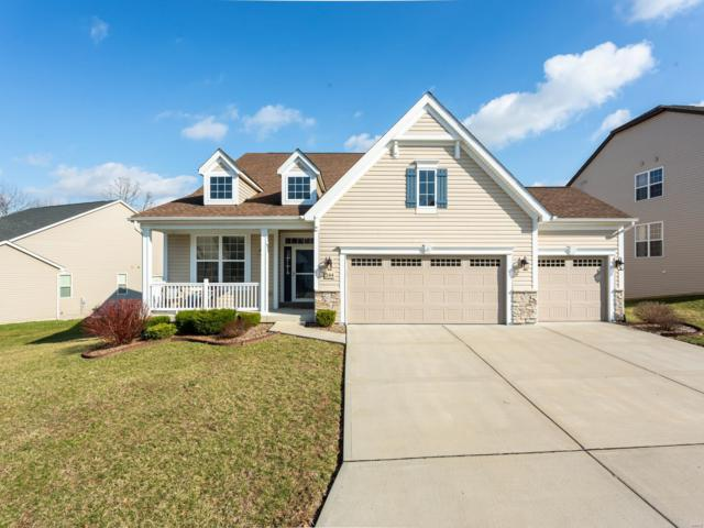 244 Dogwood Meadow Ct., Saint Peters, MO 63376 (#19019495) :: The Becky O'Neill Power Home Selling Team