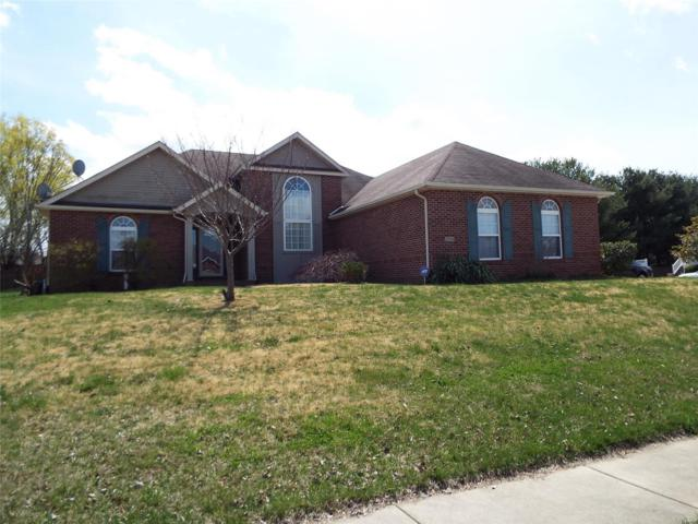 2704 Meridian Lake Drive, Shiloh, IL 62221 (#19019891) :: Holden Realty Group - RE/MAX Preferred