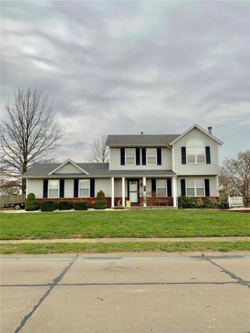 141 Turtle Creek, Troy, IL 62294 (#19021698) :: Matt Smith Real Estate Group