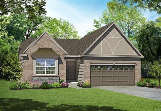 91 Alta Mira Court, Dardenne Prairie, MO 63368 (#19021699) :: PalmerHouse Properties LLC