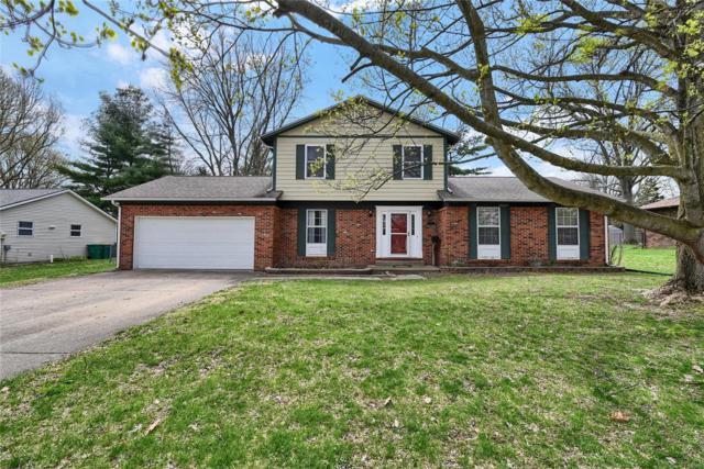 313 Donna Drive, O'Fallon, IL 62269 (#19021843) :: PalmerHouse Properties LLC