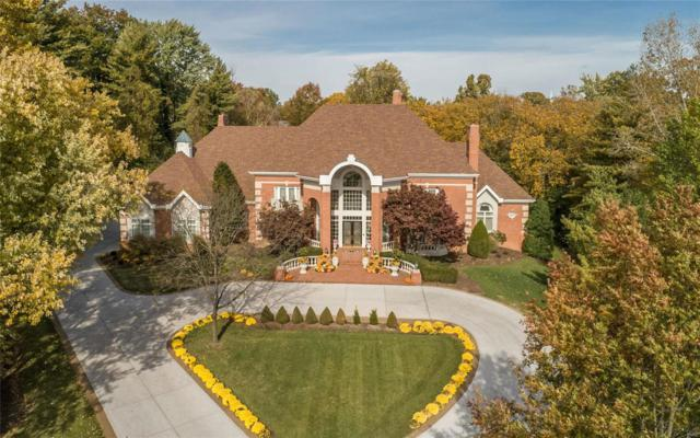 300 Wyndmoor Terrace Court, Town and Country, MO 63141 (#19022652) :: Peter Lu Team
