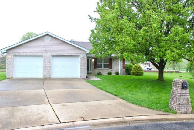 233 Wheat Ridge Lane, Millstadt, IL 62260 (#19023324) :: The Becky O'Neill Power Home Selling Team