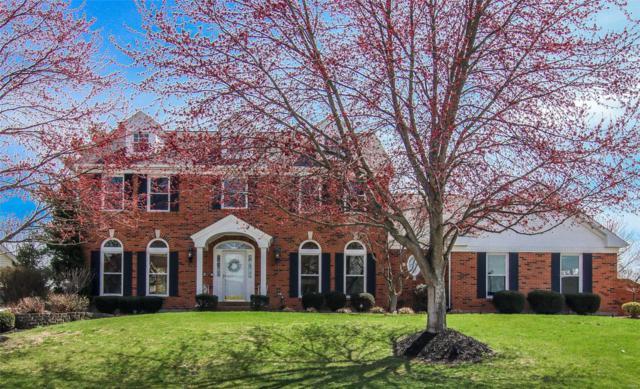548 Malinmor Drive, Weldon Spring, MO 63304 (#19023327) :: PalmerHouse Properties LLC