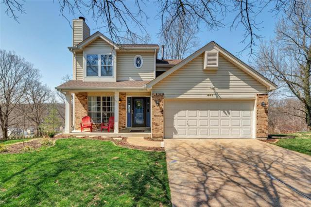 401 Oaktree Crossing Court, Ballwin, MO 63021 (#19023476) :: The Kathy Helbig Group