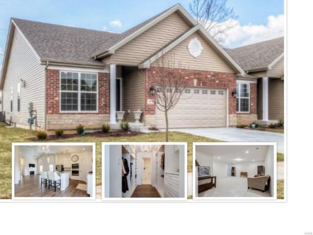 16102 Amber Vista Drive, Ballwin, MO 63021 (#19024702) :: RE/MAX Professional Realty