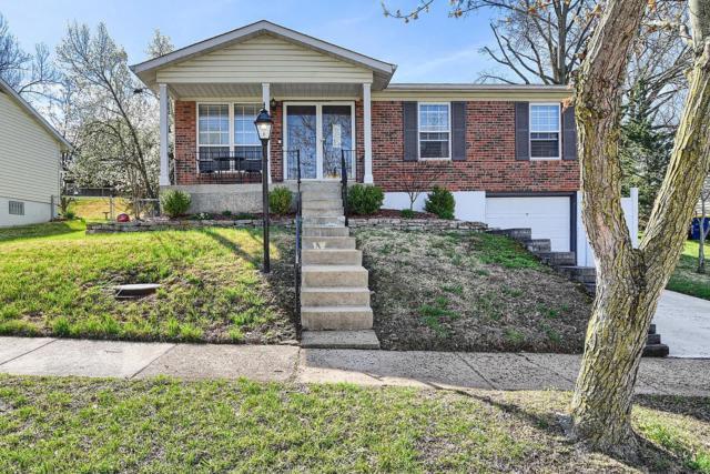 4264 Martyridge, St Louis, MO 63129 (#19024754) :: PalmerHouse Properties LLC