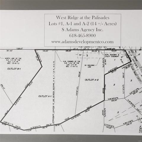896 Grafton Hills Drive, Grafton, IL 62037 (#19025200) :: Peter Lu Team
