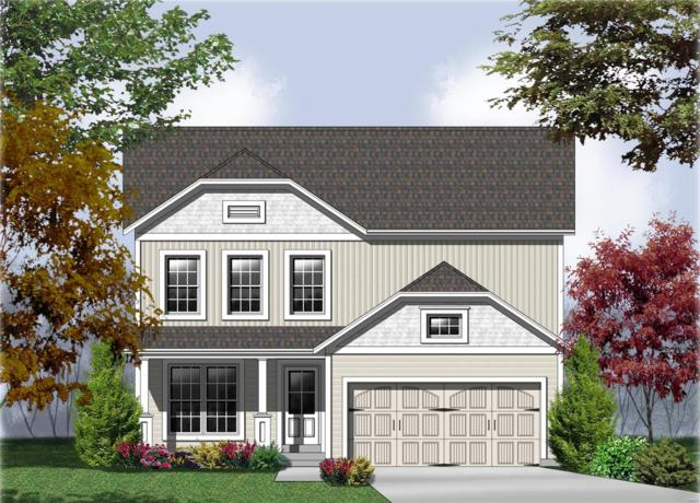 805 Caspian (Lot 187C) Drive, Wentzville, MO 63385 (#19025890) :: The Becky O'Neill Power Home Selling Team