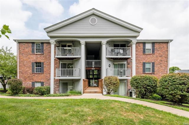 7415 Triwoods J, St Louis, MO 63119 (#19026102) :: Clarity Street Realty