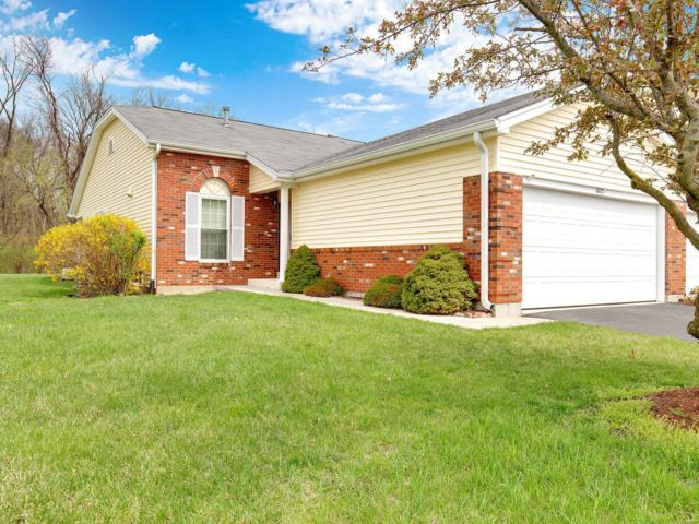16115 Rose Wreath, Florissant, MO 63034 (#19026185) :: RE/MAX Professional Realty