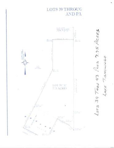 5725 N Lakeshore, Hillsboro, MO 63050 (#19026432) :: RE/MAX Professional Realty