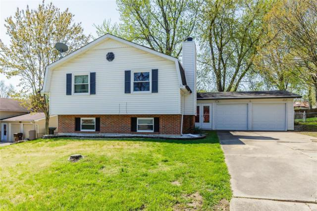 25 Wells Fargo Drive, Saint Peters, MO 63376 (#19026784) :: RE/MAX Vision