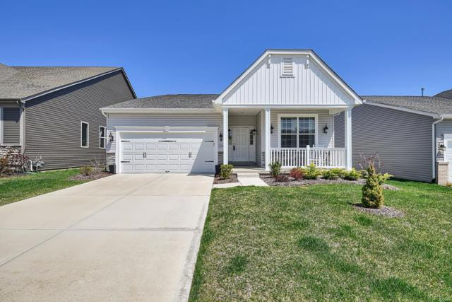 246 Thorn Brook Drive, O'Fallon, MO 63366 (#19026908) :: St. Louis Finest Homes Realty Group