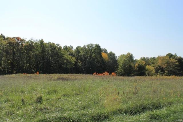 0 42.85 Ac Columbine/Clear Fork, Montgomery City, MO 63361 (#19026925) :: The Becky O'Neill Power Home Selling Team