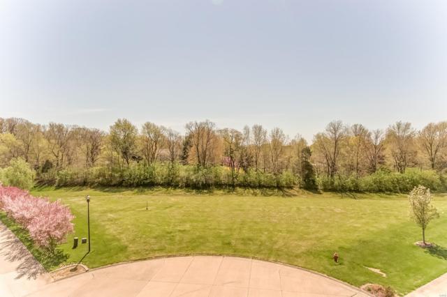 4154 Cypress Oak Lane, Smithton, IL 62285 (#19027234) :: RE/MAX Professional Realty