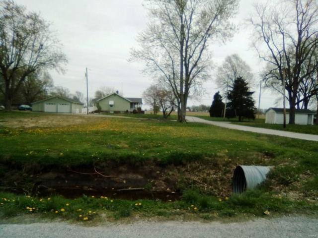 117 S Grace Avenue, Marissa, IL 62257 (#19027517) :: Clarity Street Realty