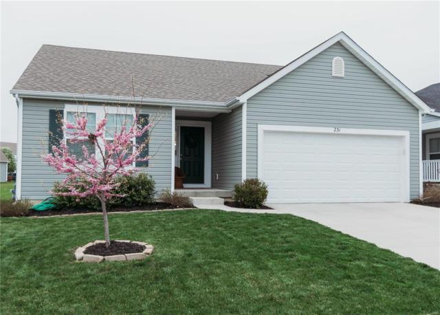 231 Sparrow Point Lane, Belleville, IL 62221 (#19027541) :: Holden Realty Group - RE/MAX Preferred