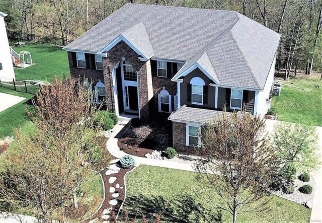 16344 Wynncrest Falls Way, Wildwood, MO 63005 (#19027776) :: St. Louis Finest Homes Realty Group