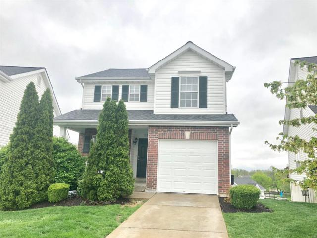 215 Tyndale Dr, O'Fallon, MO 63366 (#19027783) :: St. Louis Finest Homes Realty Group