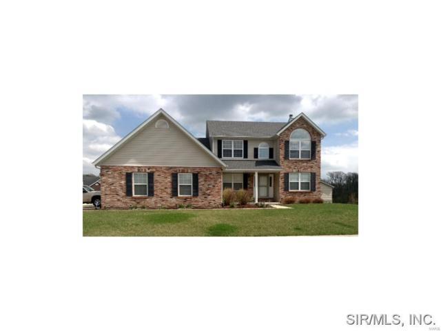 415 Larkway Drive, O'Fallon, IL 62269 (#19027877) :: PalmerHouse Properties LLC