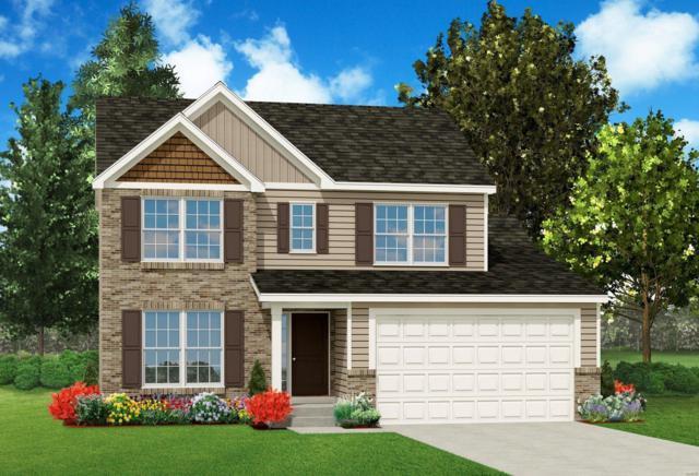 15 San Marino Parkway, Fenton, MO 63026 (#19028011) :: PalmerHouse Properties LLC