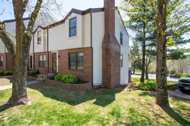 9722 Raintree Village Drive, Hillsboro, MO 63050 (#19028073) :: Holden Realty Group - RE/MAX Preferred