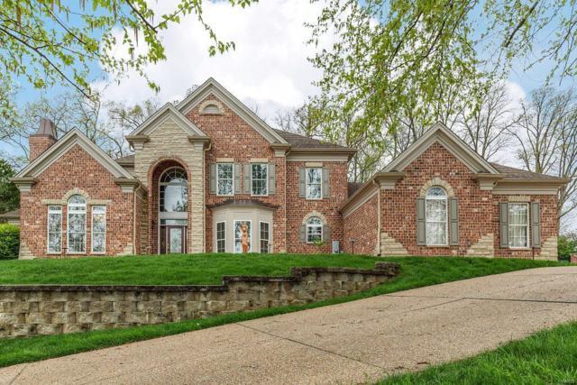 733 Deer Vue Lane, Fenton, MO 63026 (#19028200) :: The Becky O'Neill Power Home Selling Team